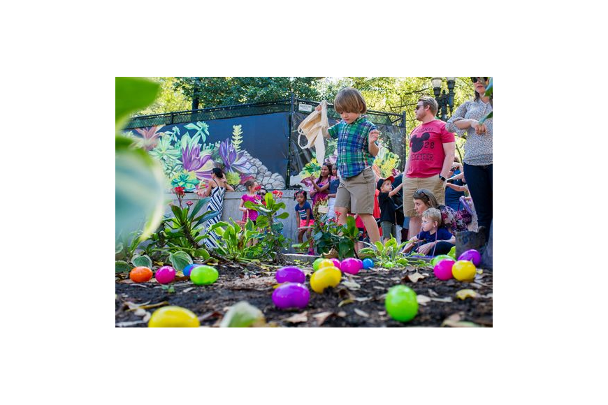 Four-year-old Easton Taft surveys eggs before the start of an egg hunt Sunday as part of the second annual Easter Bash & Egg Hunt at Hemming Park. The event also featured games, crafts and pictures with the Easter bunny.